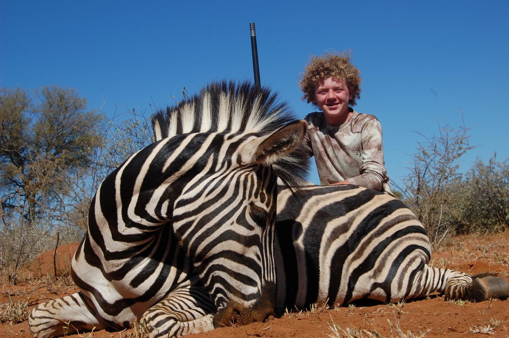 NOAH Zebra (Large)